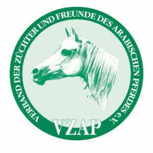 VZAP logo