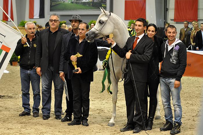 FT Shaella, Gold Medal Senior Mares, by Katarzyna Dolińska