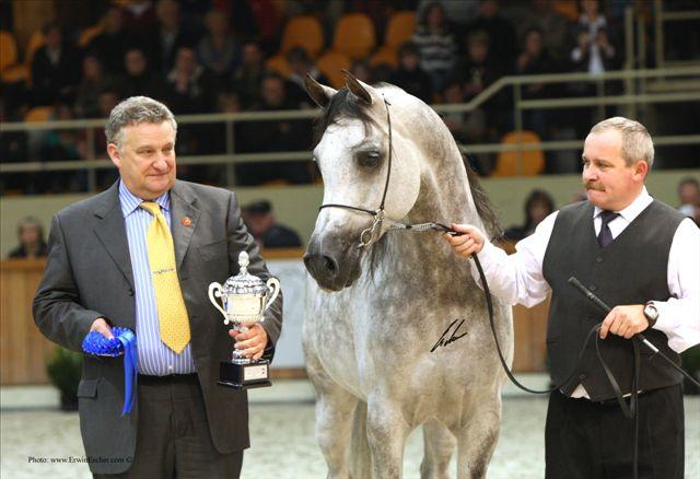 Dyr. Jerzy Białobok i Esparto, Czempionat Europy Moorsele 2008. Obok Mariusz Liśkiewicz. Fot. Erwin Escher