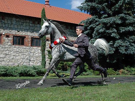 Grafik, fot. Katarzyna Dolińska