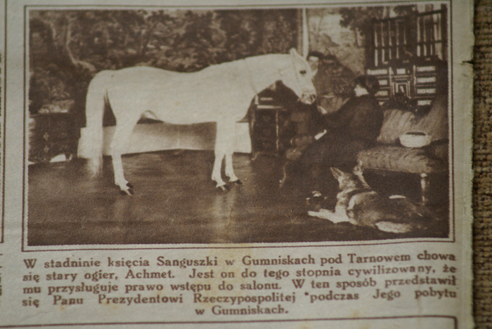 Achmet in the sitting room in Gumniska palace. Przewodnik Katolicki magazine, 2.03.1930