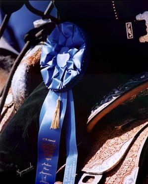 2400 koni w Scottsdale