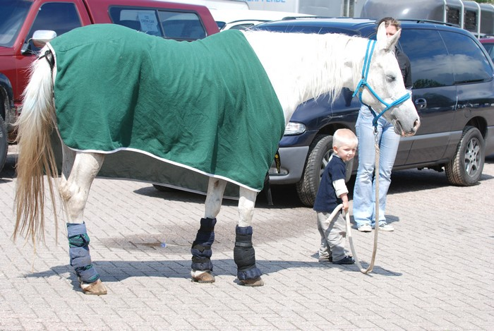 Pracę z koniem zaczynamy wcześnie, fot. Mateusz Jaworski