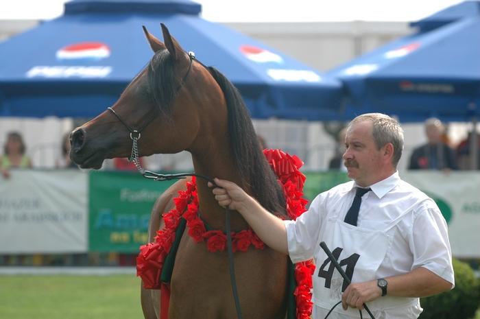 Mariusz Liśkiewicz z klaczą Ejrene, czempionat narodowy w Janowie Podlaskim 2007. Fot. Katarzyna Dolińska