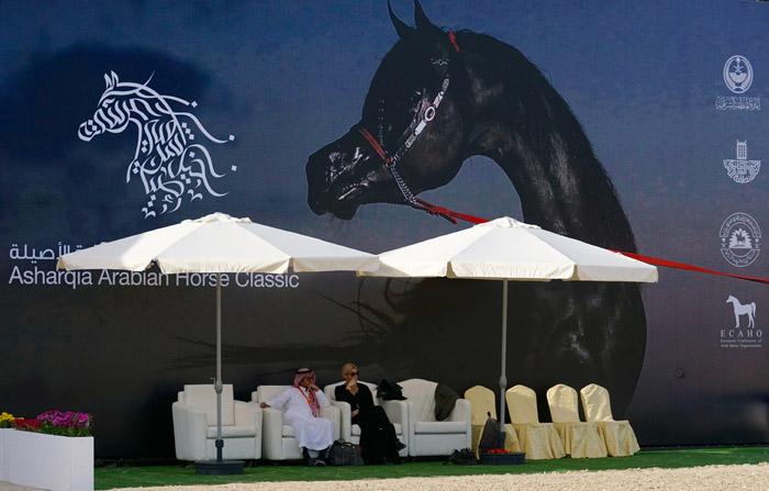 Asharqia Arabian Horse Classic, fot. Monika Luft