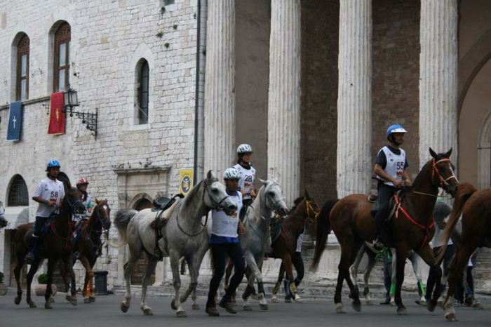 Assisi, photo shared by endurance.net