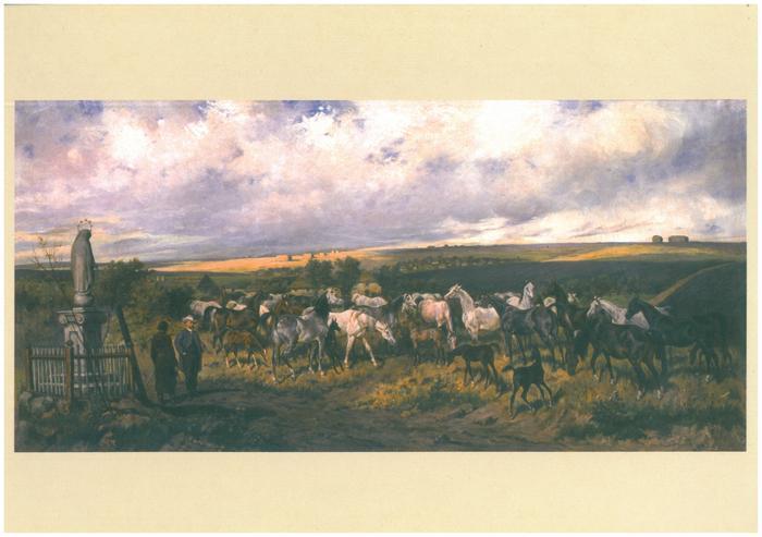 235 years of Polish Private Arabian Horse Breeding.  Taurów of Dionizy Trzeciak