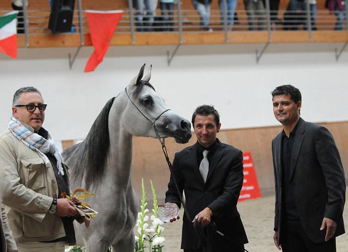 Abbiatt El Shams, fot. Sylwia Iłenda