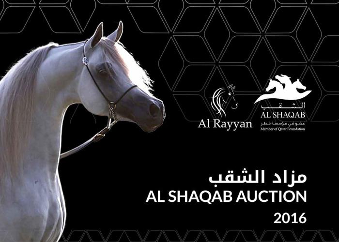 Aukcja Al Shaqab 2016 w środę