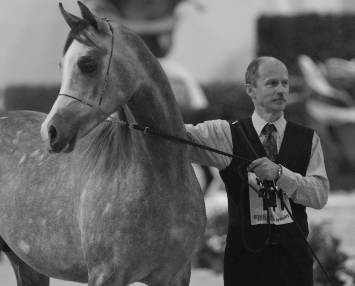 Wojciech Kowalik in Verona, with Altis. By Mateusz Jaworski