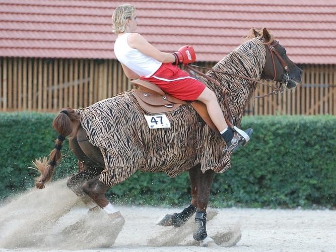 Baikal i Doris Pfann podczas freestyle reining, fot. Mateusz Jaworski