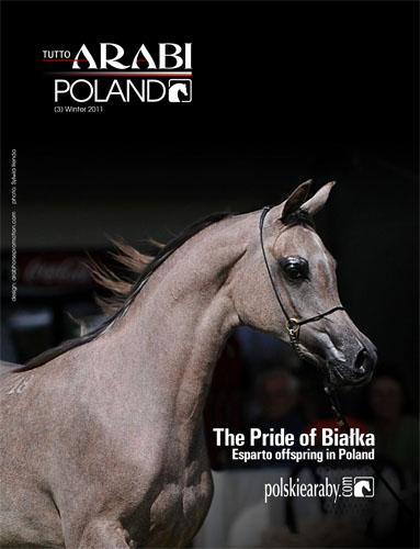 Nowy numer Tutto Arabi Poland już wkrótce!