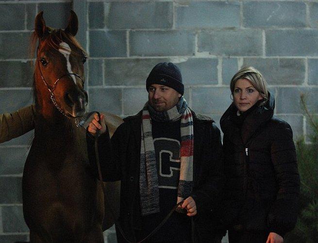 HDB Sihr Ibn Massai with Tomasz Tarczyński (Grabów nad Pilicą), who is leasing the stallion, and Claudia Darius. By Mateusz Jaworski