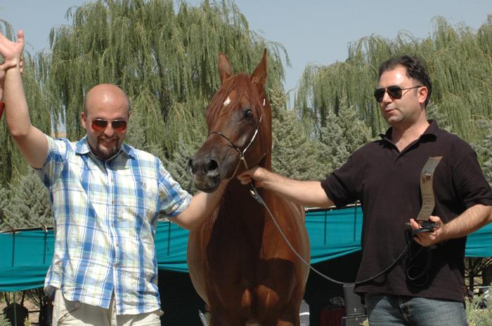 Daisy FF with Farhang Fazeli (IranHorsePromotion) and owner Hossein Mohammadineek, archive photo