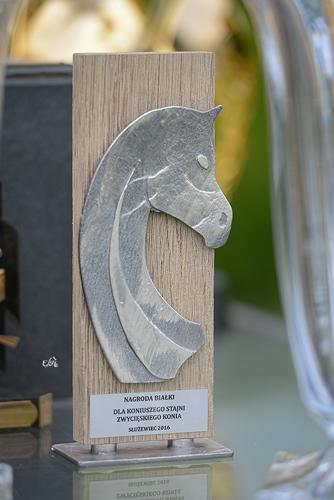 Trofeum w Nagrodzie Białki, fot. Ewa Imielska-Hebda