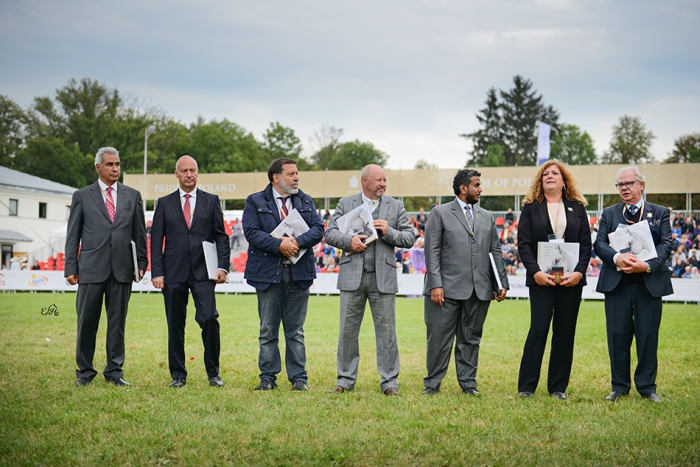 Judges, DC members and ringmaster, by Ewa Imielska-Hebda