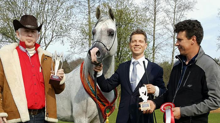 Sezon pokazowy polskich koni rozpoczęty