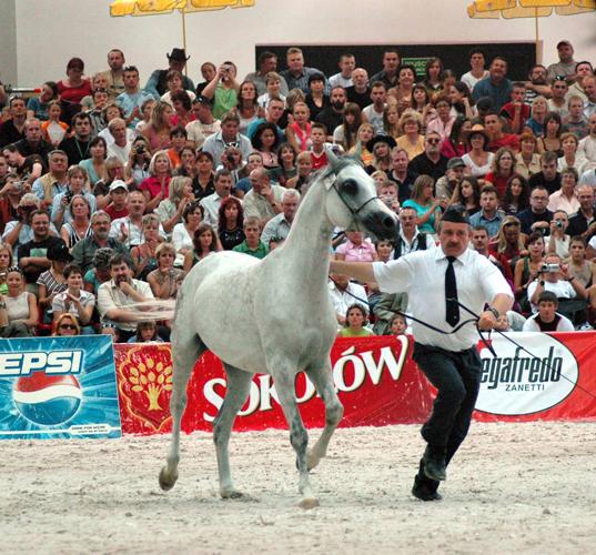 Pride of Poland 2006