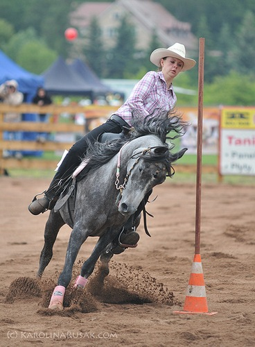 I Otwarte Mistrzostwa Polski Western i Rodeo dla koni czystej krwi arabskiej – w maju