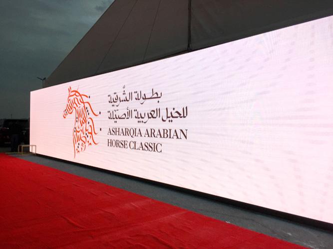 Asharqia Arabian Horse Festival 2019. Koń arabski, czyli prestiż, szlachectwo, siła i dobrobyt