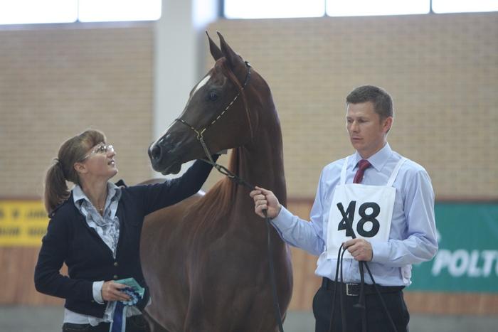 The breeder and owner of Valeriana, Hanna Sztuka, with her champion mare. By Krzysztof Dużyński