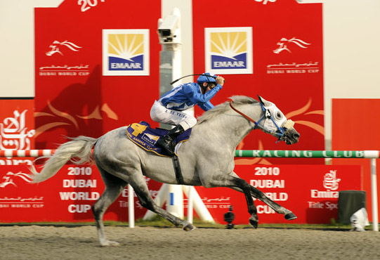 Jaafer, fot. Dubai Jockey Club