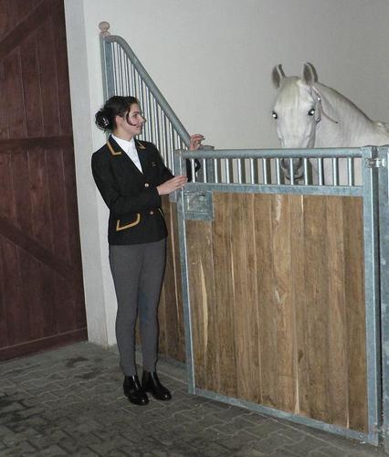 The stallion Galba with Katarzyna Markiewicz before the inspection. By Władysław Guziuk