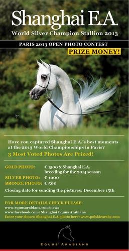 Konkurs na najlepsze zdjęcia og. Shanghai E.A. w Paryżu 2013! Nagrody pieniężne!