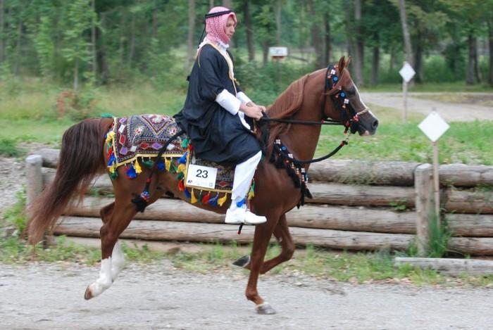 Metropolis NA - 1. miejsce w klasie Mounted Native Costume
