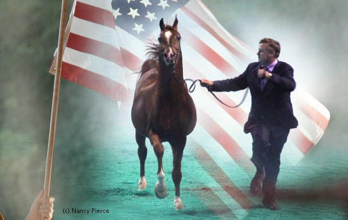 Czempionat USA: polskie konie mają groźnych rywali