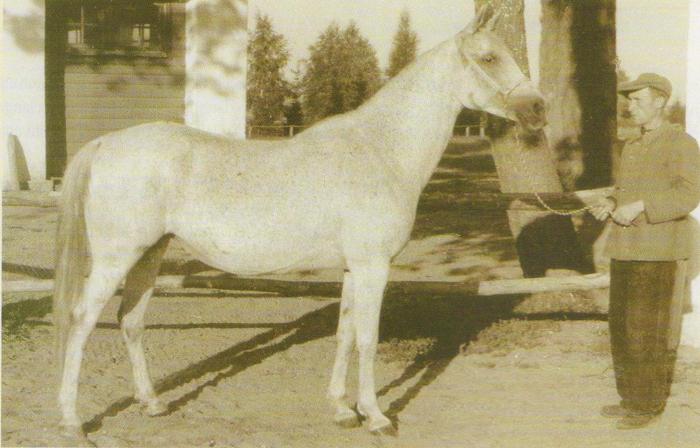 Najada, 1941, fot. archiwum
