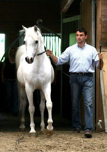 CH El Brillo i Frank Spoenle, Open House 2007, fot. archiwum La Movida Arabians