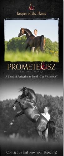 Newsletter, którym promowany był Prometeusz