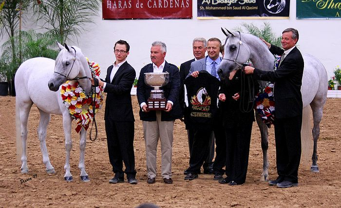 Gorge Z with the Arabian Breeders Cup. On the left - Embra, on the right - Emandoria with Greg Gallun. By Nancy Pierce