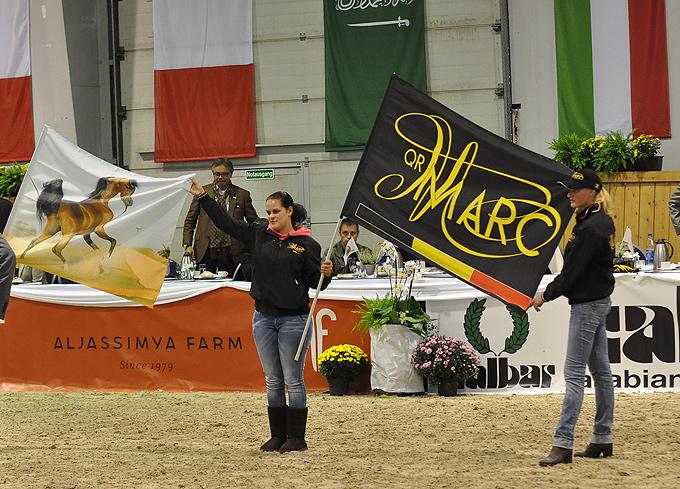QR Marc's banner, by Katarzyna Dolińska