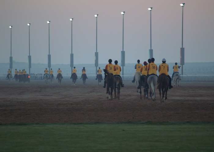 Centrum rajdowe w Dubaju. Pierwszy start odbywa się o szóstej rano. Rajd na 120 km, fot. Magdalena i Robert Rudzińscy