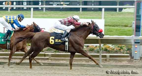 Cre Run Oaks 2007