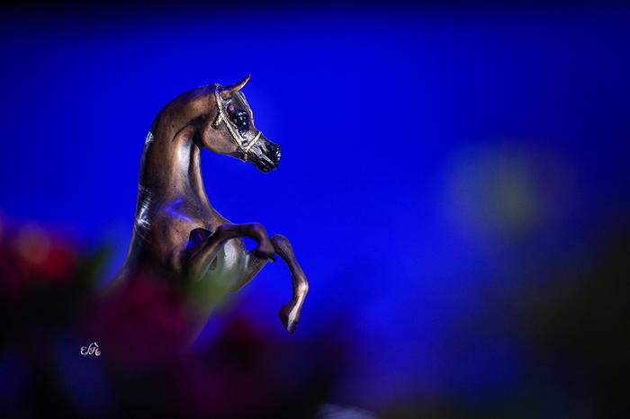 Paris trophies, by Ewa Imielska-Hebda