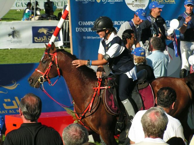 Partycja Bereznowska na Goncie, MŚ w Compiegne 2005, fot. z arch. Silvatica Black Arabians