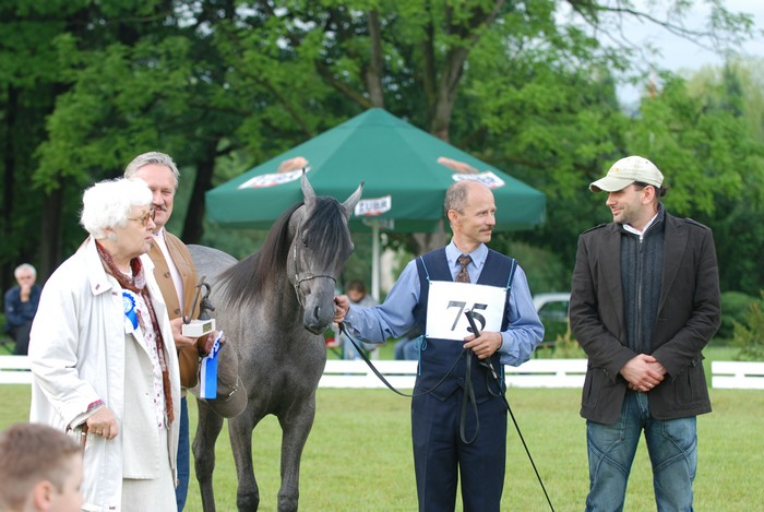 Wasa – Res. Champion Filly, Best Yearling Filly, and highest scored private-bred filly, by Mateusz Jaworski