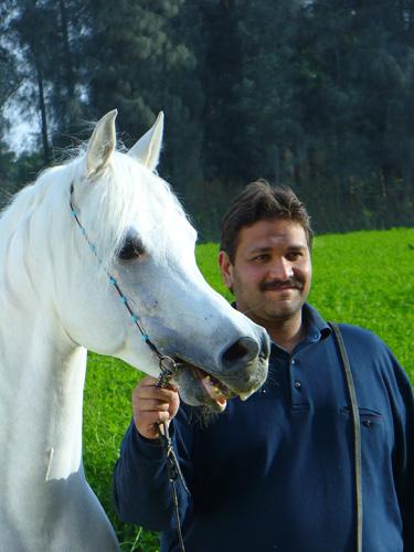 Ahmed Badrawi - Badrawi Stud, fot.Urszula Łęczycka.