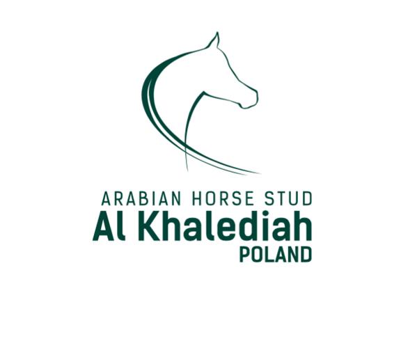 Silent Sale 2018 w Stadninie Al Khalediah Poland