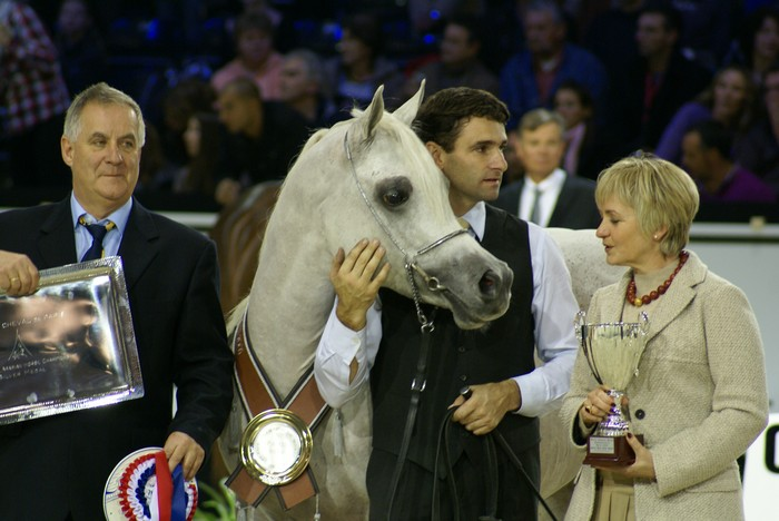 Al Lahab with the handler Frank Spoenle and the owners Mrs.&Mr. Friedmann. By Krzysztof Dużyński