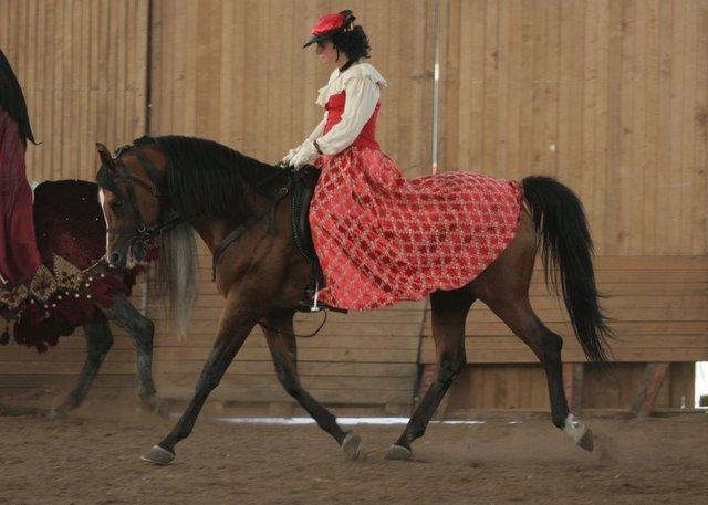 Pleasure Open & Arabian Show. Zobacz zdjęcia!