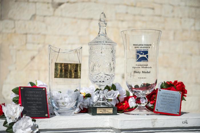 Trophies for Białka, by Ewa Imielska-Hebda