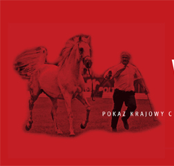 Dwa nowe polskie pokazy w czerwcu. Zniżki w opłatach za pokaz w Łazienkach!