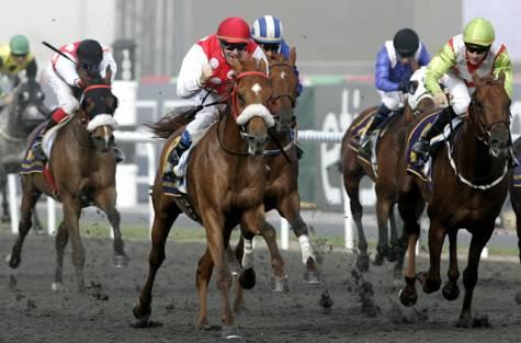 Dubai Kahayla Classic 2011 - triumf Seraphina Du Paon