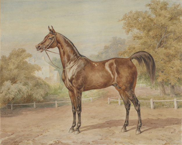 Juliusz Kossak: Chestnut horse Carogród (1875). Photo from the Regional Museum of Tarnów (Muzeum Okręgowe w Tarnowie) collection, Poland