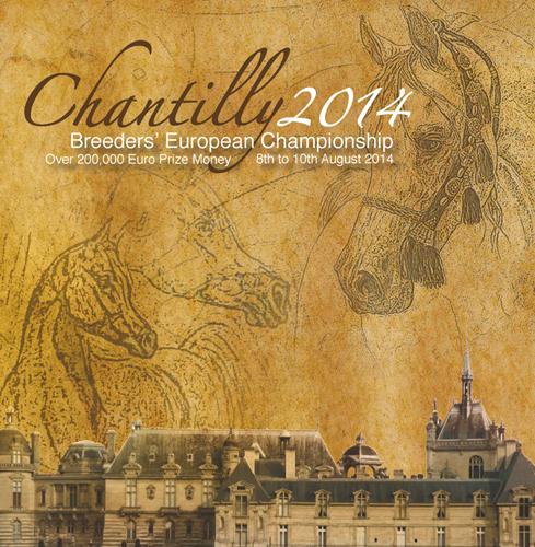 Chantilly 2014 – dwa razy brąz dla Polski