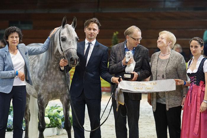 Chaos Persefona, Best Horse from Poland, by Krzysztof Dużyński